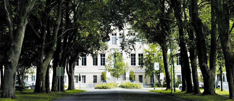 Collège Mérici