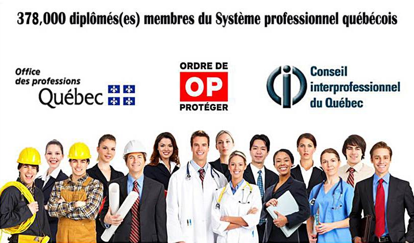 Système professionnel québécois
